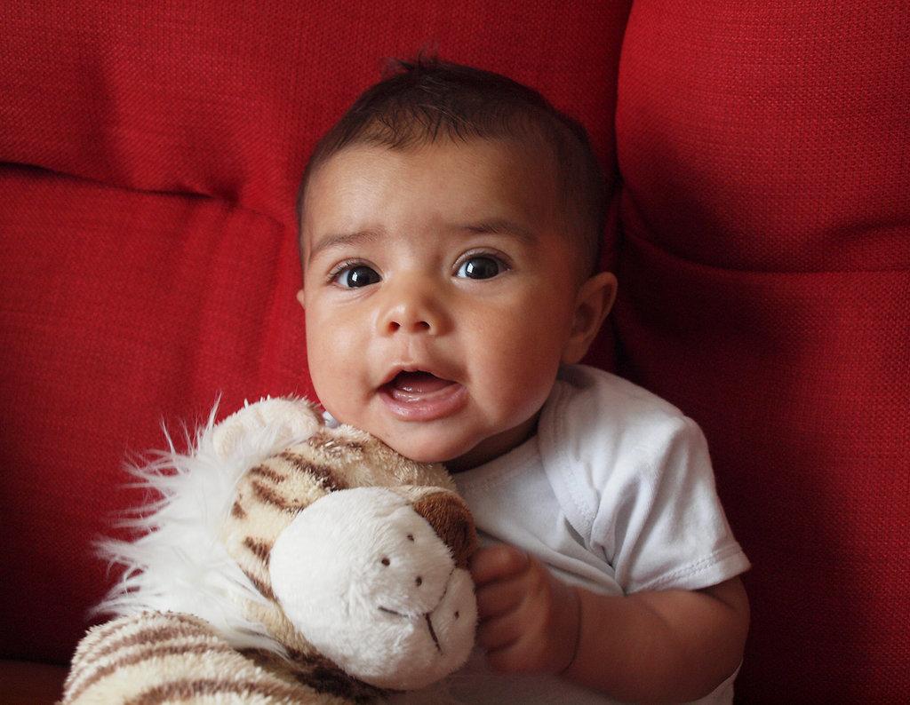 Look at my tiger!